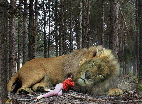 aslan-lion-girl-sleeping (1)